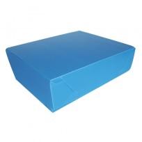 Legajo Plástico 12 (28x39)